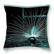 Peacock Blues Tail Throw Pillow