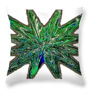 Peacock Burst Throw Pillow