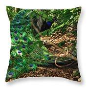 Peacock Hiding Throw Pillow