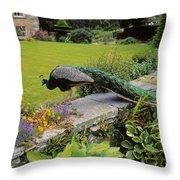 Peacock In Formal Garden, Kilmokea, Co Throw Pillow