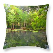 Peacock Springs State Park Throw Pillow