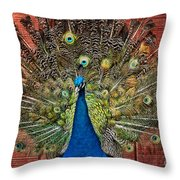 Peacock Tails Throw Pillow