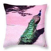 Peacock Walk Throw Pillow