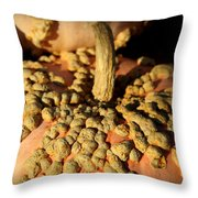 Peanut Pumpkins Throw Pillow by Karen Wiles
