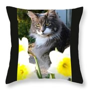 Peanut The Cat And Jonquils Throw Pillow