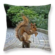 Peanuts For Lunch Throw Pillow