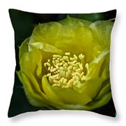 Pear Cactus Flower Throw Pillow
