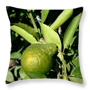 Pearlike Throw Pillow