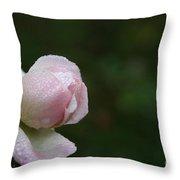 Pearlized Throw Pillow