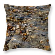 Pebbles And Shells By The Sea Shore Throw Pillow