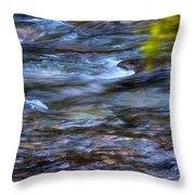 Pebbles Under Icicle Creek Washington State Throw Pillow