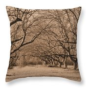 Pecan Orchard Throw Pillow