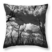 Pecan Trees Throw Pillow