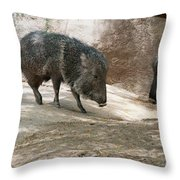 Peccary Throw Pillow