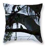 Pecker Throw Pillow