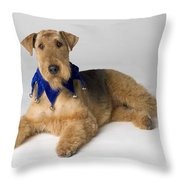 Pedigree Dog Throw Pillow