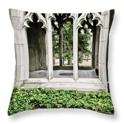 Peek-a-boo At Valley Forge Throw Pillow