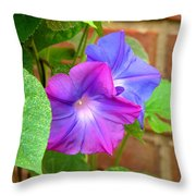 Peek-a-boo Morning Glories Throw Pillow