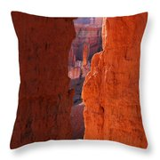 Peek A Boo Trail 3 Throw Pillow
