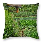 Peeking Into A Garden Throw Pillow