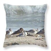 Peeps At The Beach #2 Throw Pillow