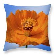 Pefect In Orange Throw Pillow