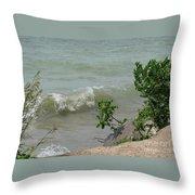 Pelee Shore Throw Pillow