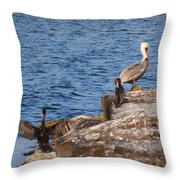 Pelican And Cormorants Throw Pillow