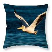 Pelican Brief Throw Pillow