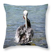 Pelican Grooming Throw Pillow