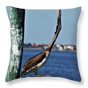 Pelican IIi Throw Pillow