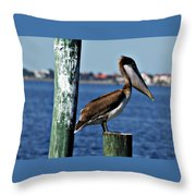 Pelican Iv Throw Pillow
