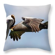 Pelican Prepares To Dive Throw Pillow