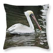 Pelican Solo Throw Pillow