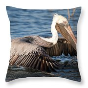 Pelican Take Off Throw Pillow
