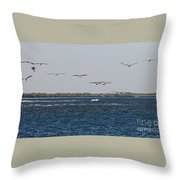 Pelicans In Line Throw Pillow