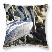 Pelicans Of Keaton Beach Canal Throw Pillow