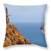 Pelicans Off The Point Throw Pillow