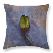 Penchant Naturel - 07at04b3 Throw Pillow by Variance Collections