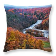Pennsylvania Color Throw Pillow