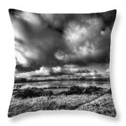 Penyfan Pond Mono Throw Pillow