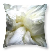 Peon Throw Pillow