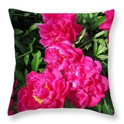 Peony Named Karl Rosenfield Throw Pillow