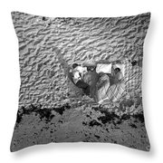 People Camped Out For Apollo 11 Launch Throw Pillow