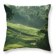 People Walking Through Lujeri Tea Throw Pillow