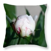 Peppermint Peony Throw Pillow