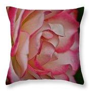 Peppermint Rose Throw Pillow