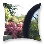 Perception Of Hindsight Throw Pillow