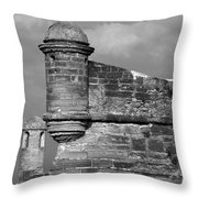 Perched On History Throw Pillow