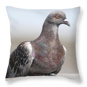 Perched On The The Dock Of The Bay Throw Pillow